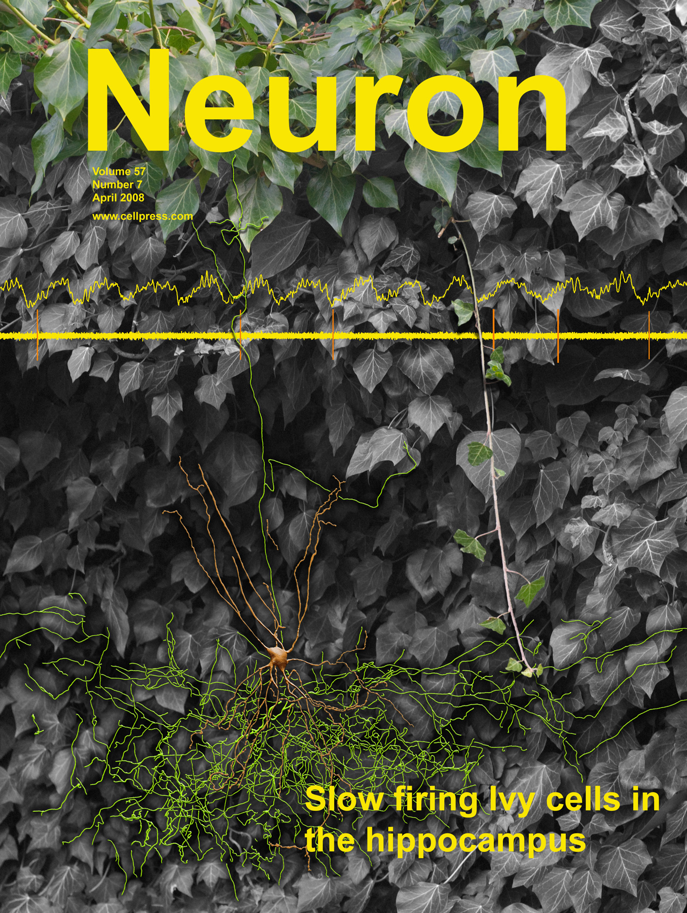 Neuron Ivy Cell Cover 2008