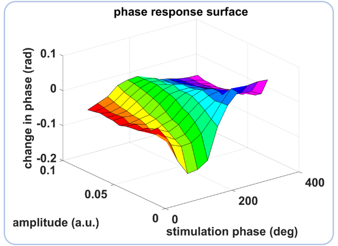 Phase response to stimulation along both the tremor oscillation phase axis and the tremor oscillation amplitude axis