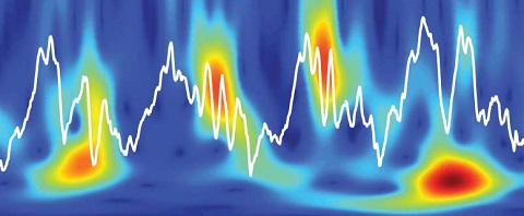 A picture of theta oscillations in the hippocampus.